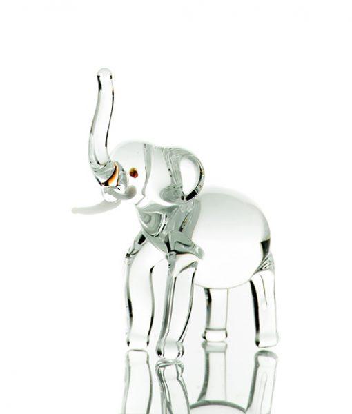 Elefant sticla
